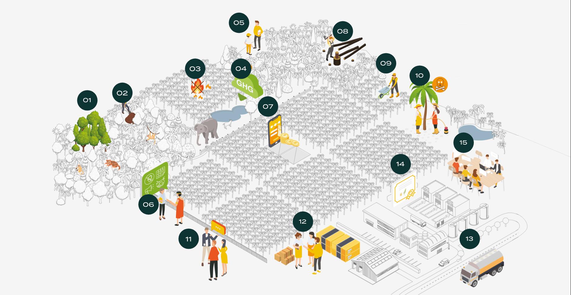 palm oil illustration